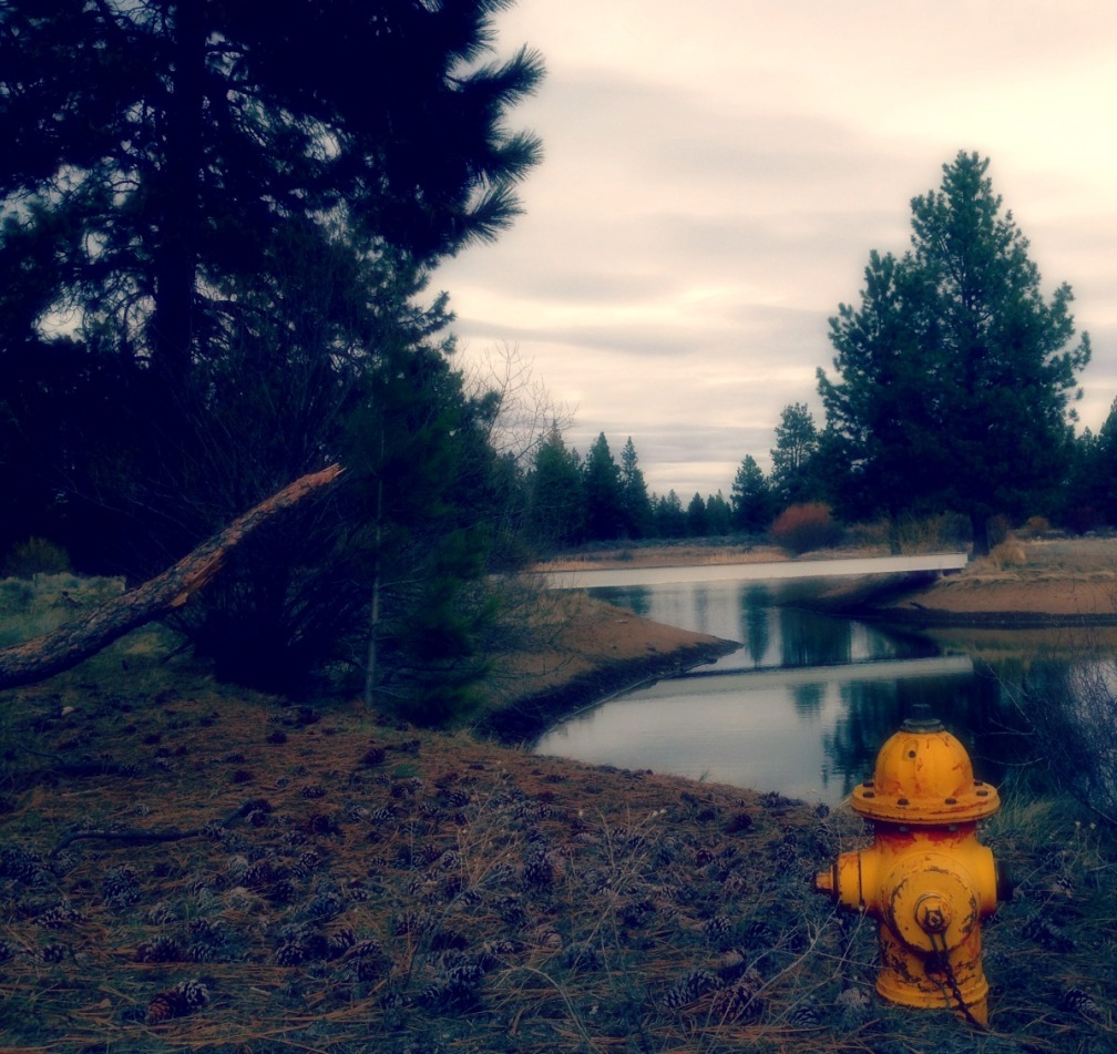 yellow hydrant1